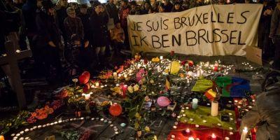 Rafuiala intelectualilor dupa atentatele de la Bruxelles: Papahagi si Danilet, acuzati de rasism.