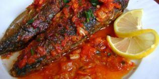 Macrou in sos tomat. Secretul preparatului culinar lichid care face deliciul consumatorilor de peste