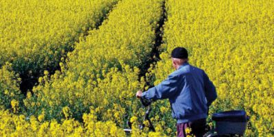 Politico: Fermierii romani sunt cei mai loviti de schema frauduloasa de import a biodieselului din Polonia